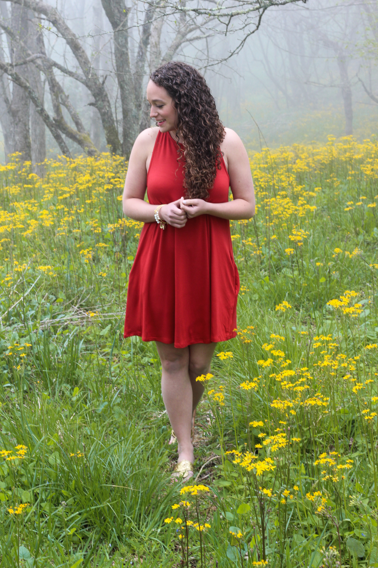 red swing dress with a keyhole back from www.shopwithindie.com